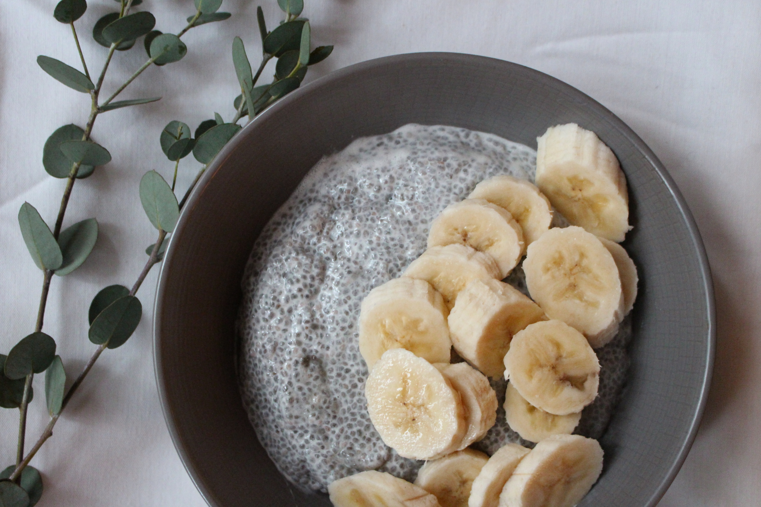Vanilla Chia Pudding Bowl